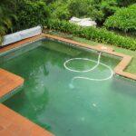 Водоросли в бассейне: как бороться